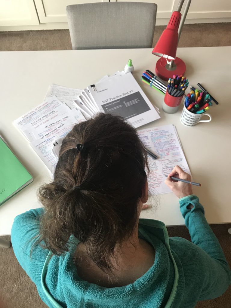 SAT prep, college prep, study aid